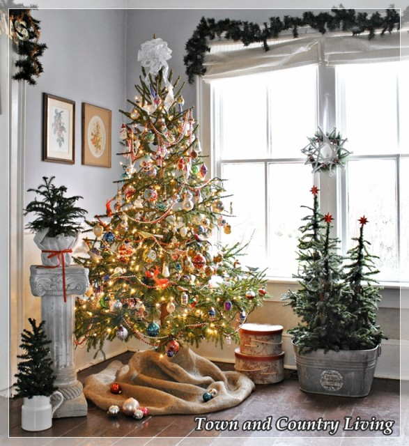 Old Fashioned Christmas Trees