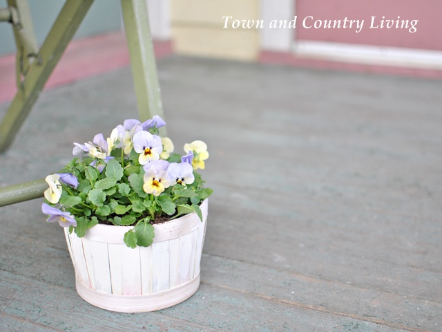 Pansies on the Porch