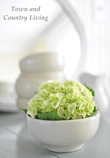White bowl with hydrangea