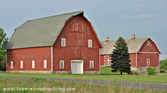 Red Barns in Forest Preserve