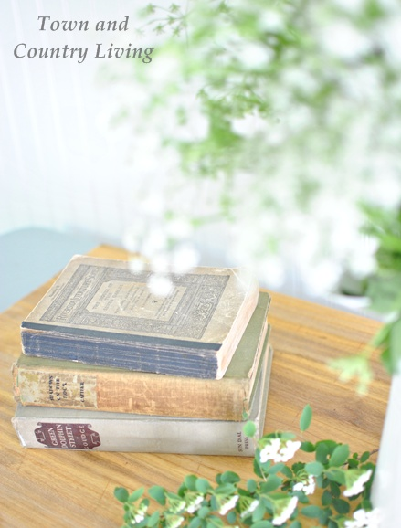 Vintage books with roadside wildflowers