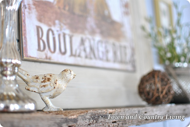 Bird on Shelf with Boulangerie sign