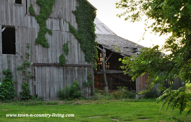 Rustic Barn in Illinois via Town and Country Living