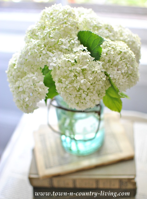 White hydrangeas in a blue Atlas jar - Town and Country Living
