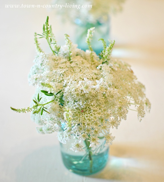 Queen Anne's Lace in a blue Ball mason jar via Town and Country Living