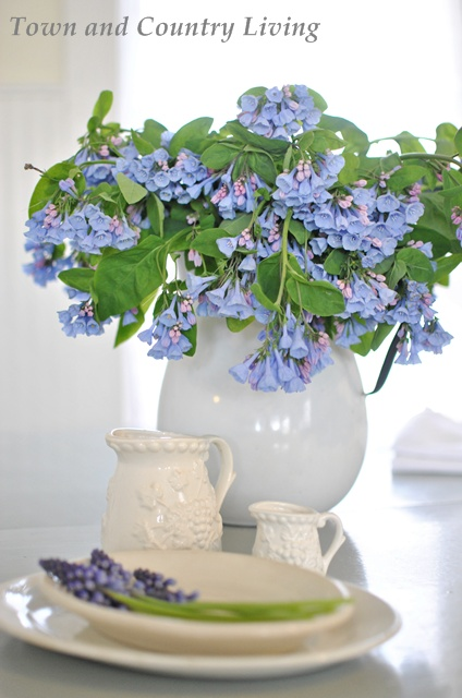 Virginia Bluebells in an enamel pitcher via Town and Country Living