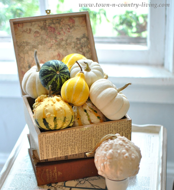 Box of autumn gourds via Town and Country Living