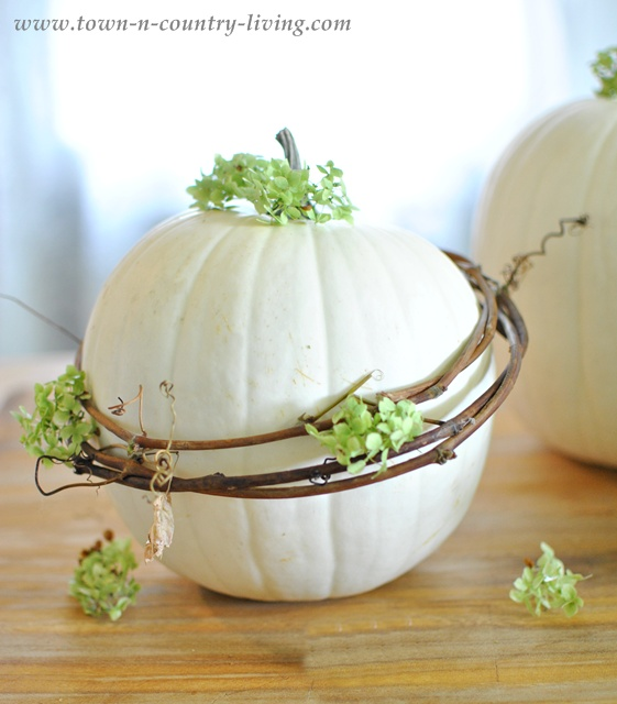 White pumpkin with grapevine wreath via Town and Country Living