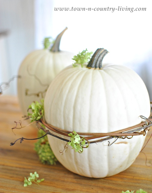 White pumpkin decorated with grapevines and hydrangeas