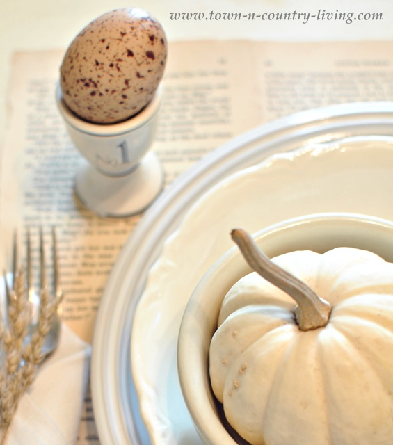 Baby Boo Pumpkin paired with white ironstone