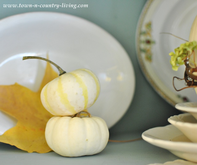 Small gourds paired with white ironstone in a farmhouse Fall hutch