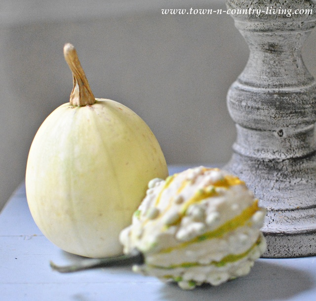 Spaghetti squash paired with autumn gourd via Town and Country Living