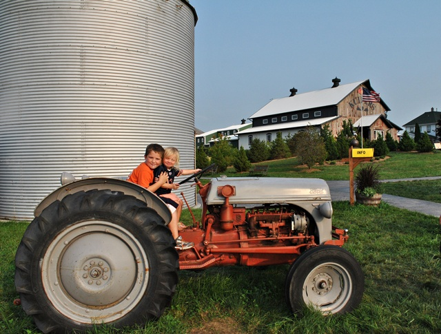 Apple orchard in Maple Park, Illinois via Town and Country Living