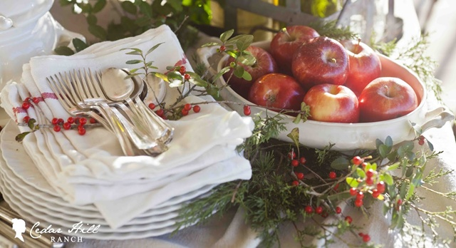 Christmas Inspiration by Cedar Hill Farmhouse