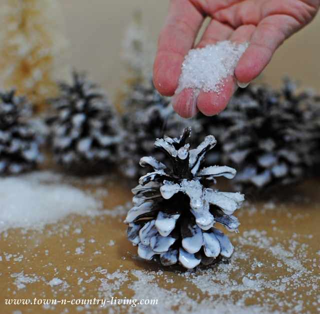 Create frosty looking pine cones with Epsom salt
