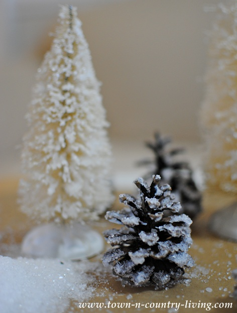 How to make frosty looking pine cones