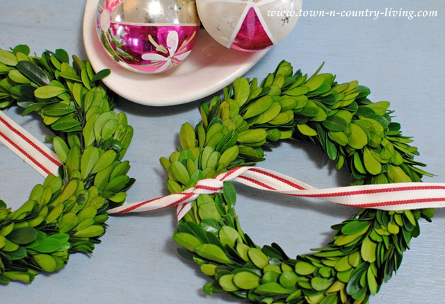 How to make a Christmas boxwood wreath door hanging