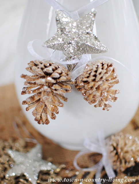 Pine cones and glitter star