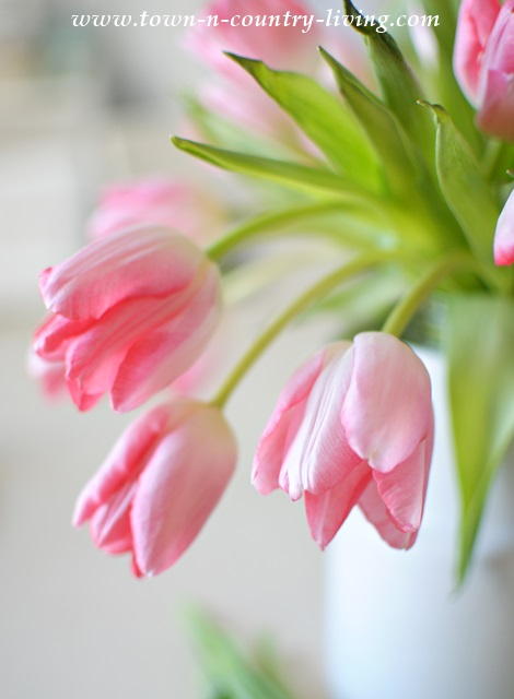 Pink Tulip Arrangement via Town and Country Living