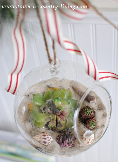 DIY Hanging Globe Terrariums via Town and Country Living