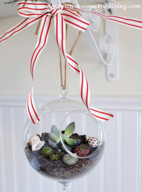 Make Your Own Hanging Globe Terrariums