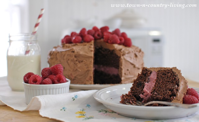 Dark Chocolate Cake with Raspberry