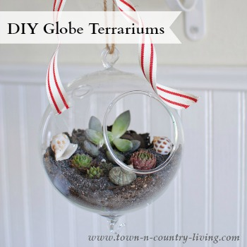 DIY Globe Terrariums via Town and Country Living