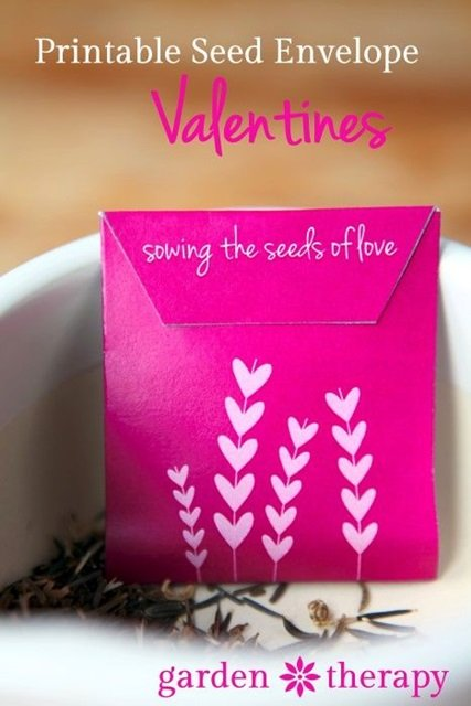 Garden Therapy Seed Packet Valentines