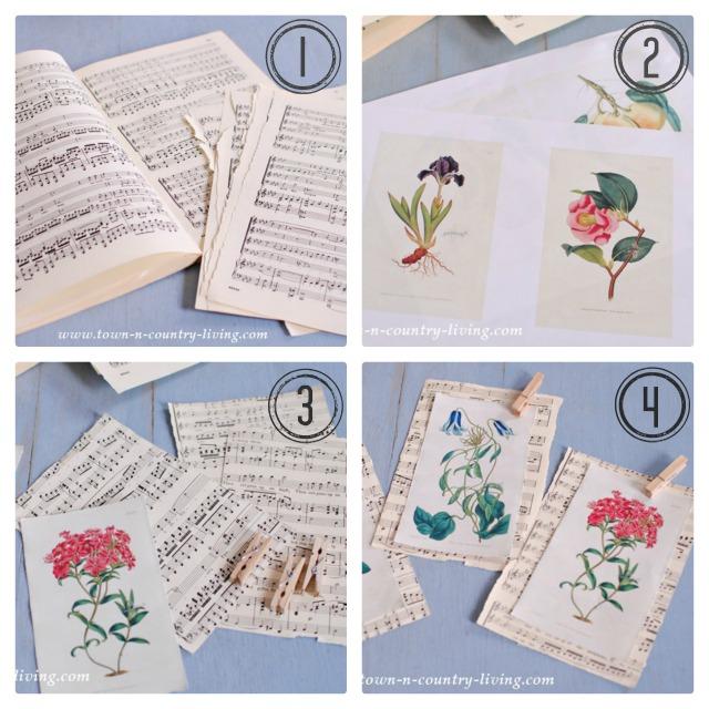 DIY Botanical Print Collage