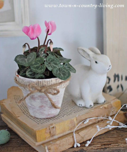 Pink cyclamen and white bunny with vintage books