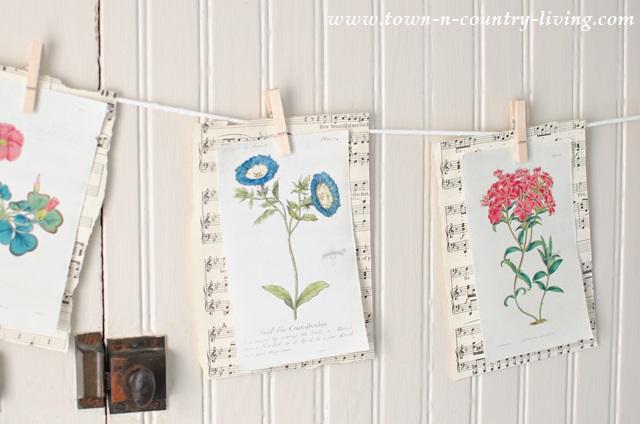 How to make a botanical print banner