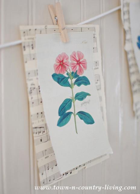 Pink Botanical Print
