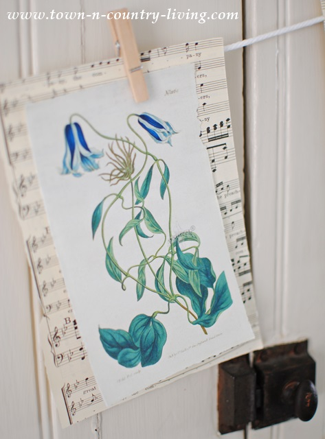 Bluebell Botanical Print