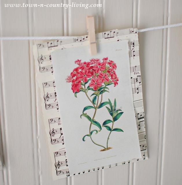 Floral Botanical Print for Banner