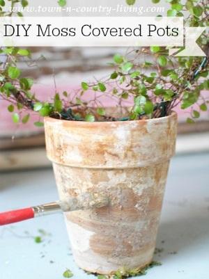 DIY Moss Covered Garden Pots
