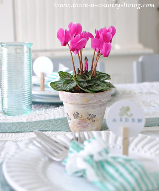 Mini Pink Cyclamen Floral Centerpiece