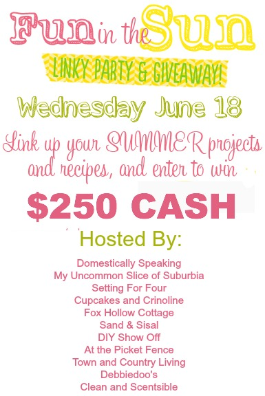 Fun in the Sun Linky Party and Giveaway