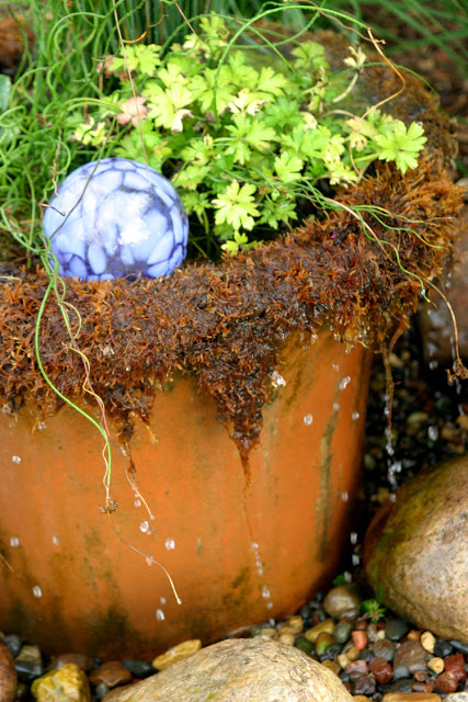 Dripping Moss Container Water Garden