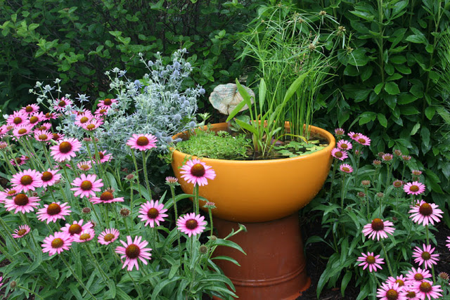 Orange Pot on Pedestal becomes Container Water Garden