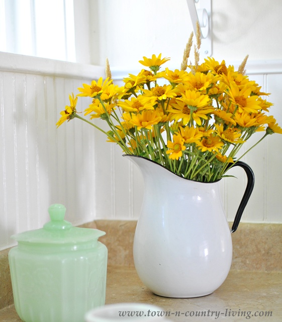 Yellow Wildflowers in a Vintage Enamelware Pitcher