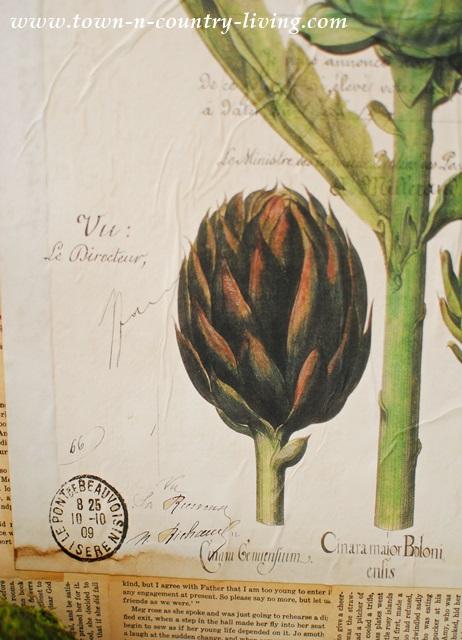 Details of botanic artichoke print