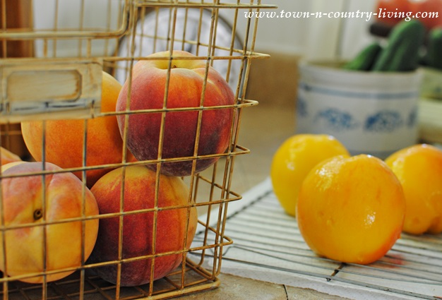 Fresh Southern Illinois Peaches ready for canning