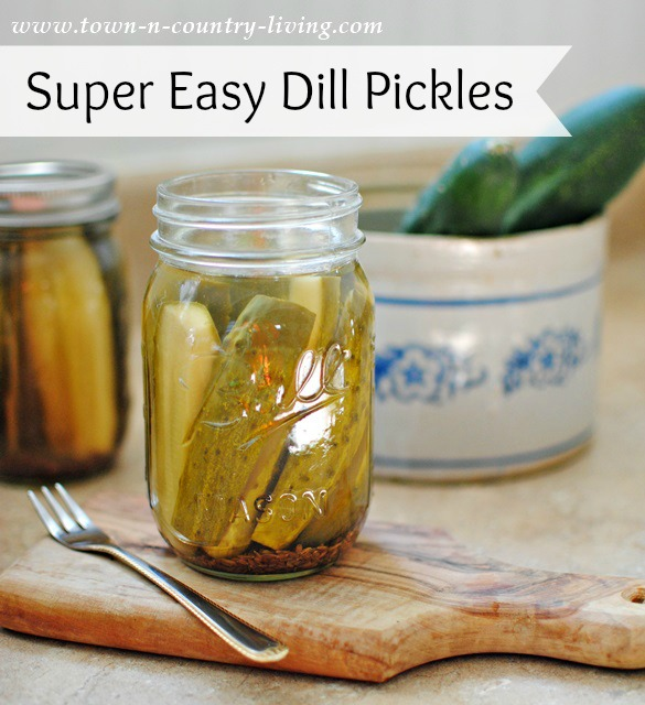 Super Easy Dill Pickle Recipe