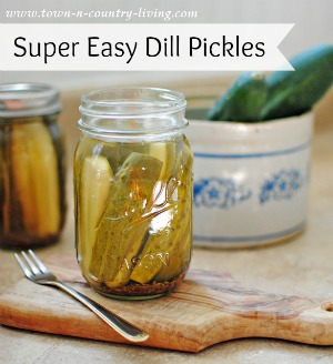 Canning Super Easy Dill Pickles