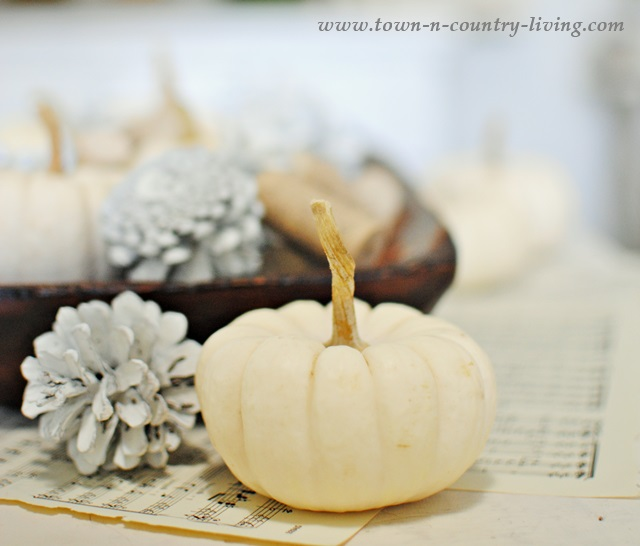 Baby Boos with Pine Cones Painted White