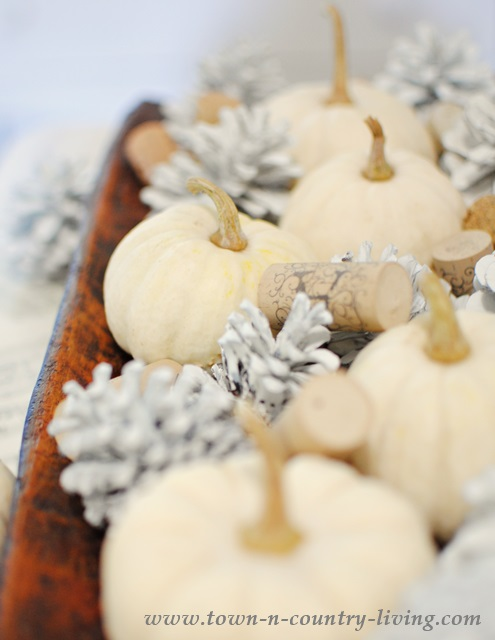 Pine Cones Painted White - so easy to do and they look cute paired with Baby Boos.