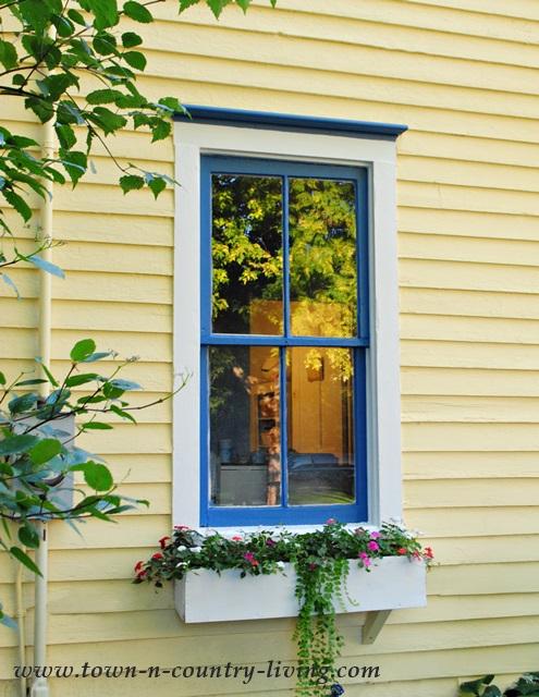 Farmhouse Window with Flower Box