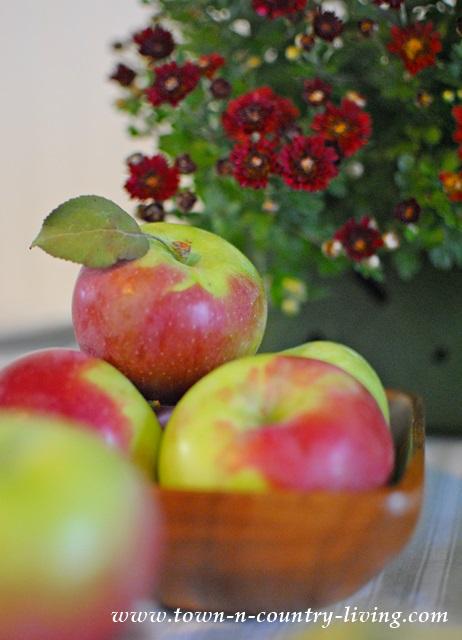 Jonamac Apples