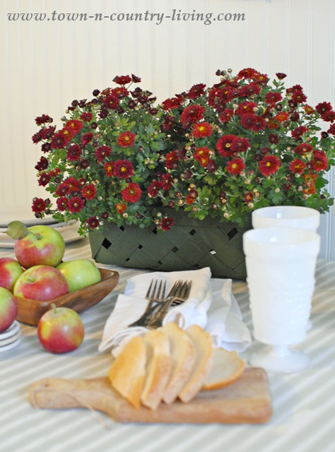 Jonamac Apples Paired with Fall Mums
