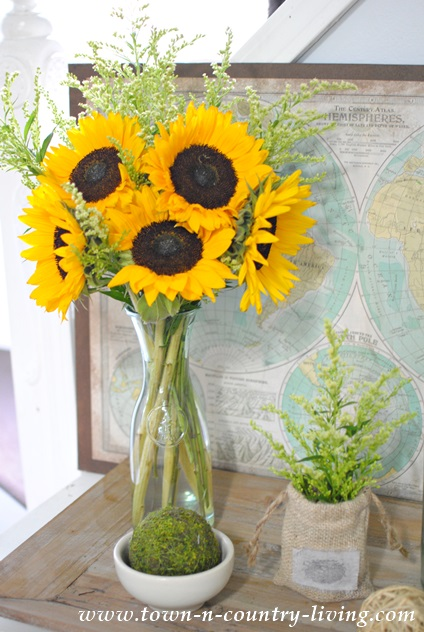 Late Summer Vignette with Sunflowers